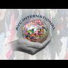 A.V.C. INTERNATIONAL S.R.L.