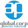 AP GLOBAL CORPORATION