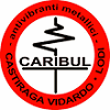 CARIBUL SRL