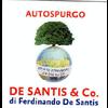 AUTOSPURGO DE SANTIS & CO DI DE SANTIS FERDINANDO