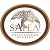 SATEA LLC