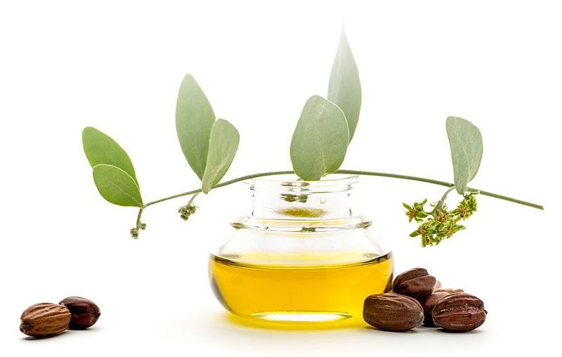 Organic jojoba oil, Organic jojoba seed oil, SANABIO GMBH, Germany