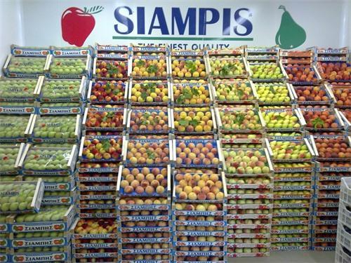 FRESH FRUITS, IMPORT FRESH GREEK FRUIT AND VEGETABLES IN