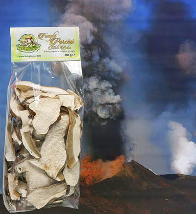 Funghi Porcini Secchi Dried Mushroom 50 100 250 500gr