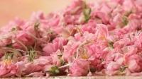 Huile de rose de Bulgarie, huile essentielle, hydrolat