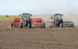 В Днепропетровской обл.посеют более 500тыс.га озимой пшеницы