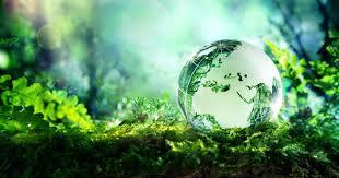 Emballage et conditionnement Eco Responsable