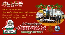 Wish you a great Christmas and Happy New Year