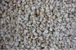 organic macadamia chips