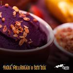 Açaí do Brasil - sorvete de açaí