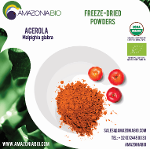Organic Acerola Freeze-Dried Powder 22% Vitamin C