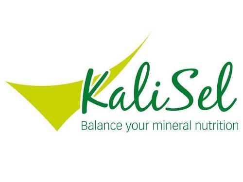 KaliSel