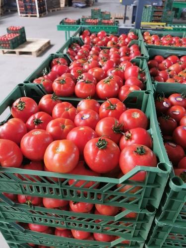 Английские помидоры