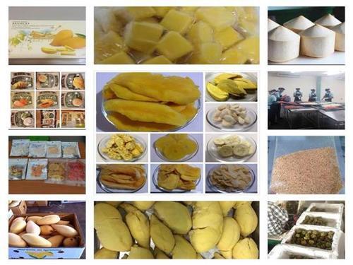 Dried / Freeze Dried / Frozen (IQF) / Fresh Fruits