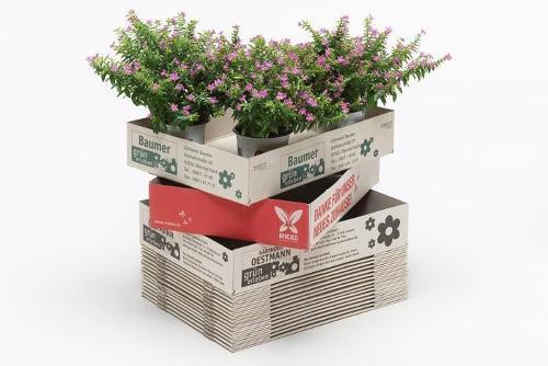Transportkartons für Pflanzen (Aufrichteböden)