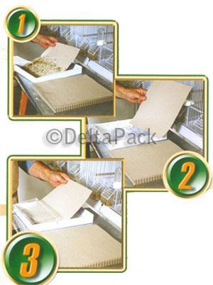 Litera en papel gofrado para Animales de compañía