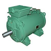 Flüssigkeitsgekühlte Drehstrom-Asynchronmotoren 150...