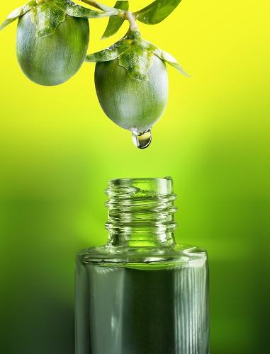 Jojoba oil (Simmondsia chinensis)