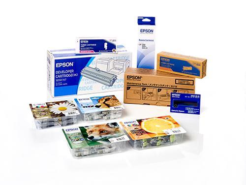 Epson originale - Materiali di consumo e ricambi