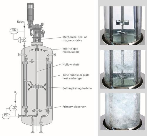 Hydrogenation Plants