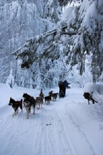 L'hiver russe