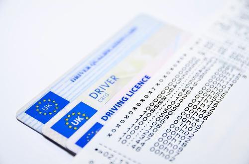 Traduction permis de conduire