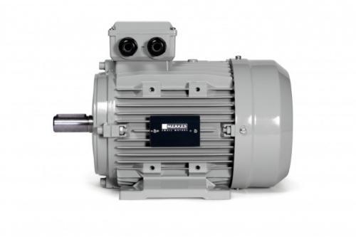 IE4 Super Premium Norm-Motor - MPM 16