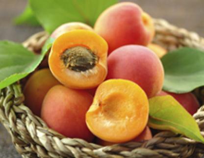 Produits - Arômes alimentaires Notes FRUITS DU VERGER