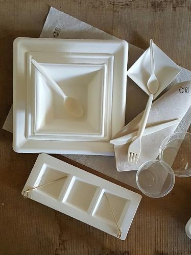 piatti compostabili