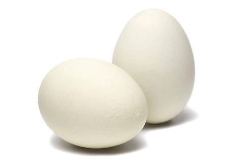 White, Brown eggs