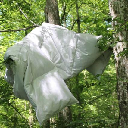 Couettes et couvertures
